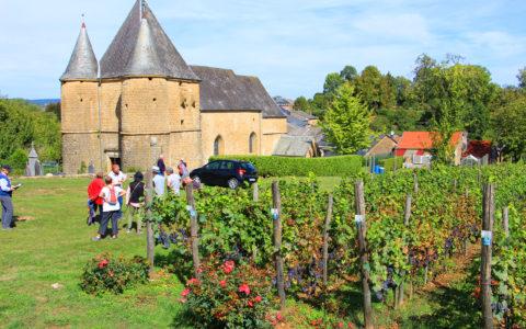 L'église fortifiée de Saint Etienne de Servion datant du XVème siècle inscrite sur la liste de monuments historiques, entourée de ses vignes