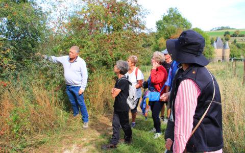Tout le long du sentier de la Boulette, des informations intéressantes sont données sur les arbres et arbustes